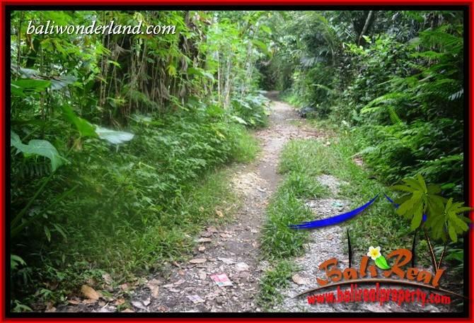 FOR sale Exotic Property Land in Tabanan TJTB416
