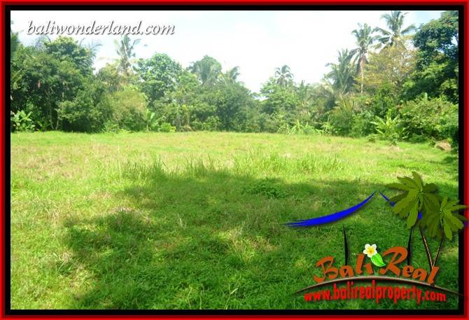 Beautiful 4,100 m2 Land for sale in Tabanan Penebel TJTB417
