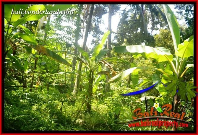 Beautiful 4,100 m2 Land for sale in Tabanan Penebel TJTB417