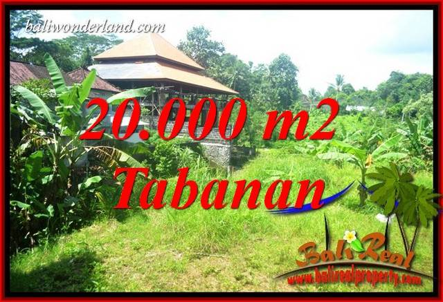 Magnificent Land sale in Tabanan TJTB418