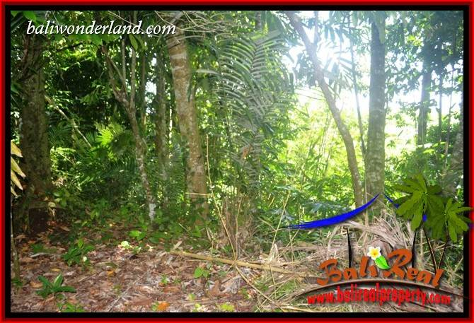 FOR sale Exotic Property Land in Tabanan TJTB418