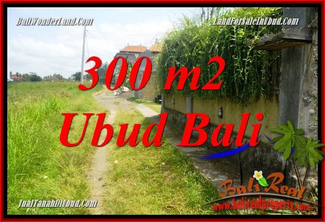 FOR sale Affordable 300 m2 Land in Ubud Bali TJUB687