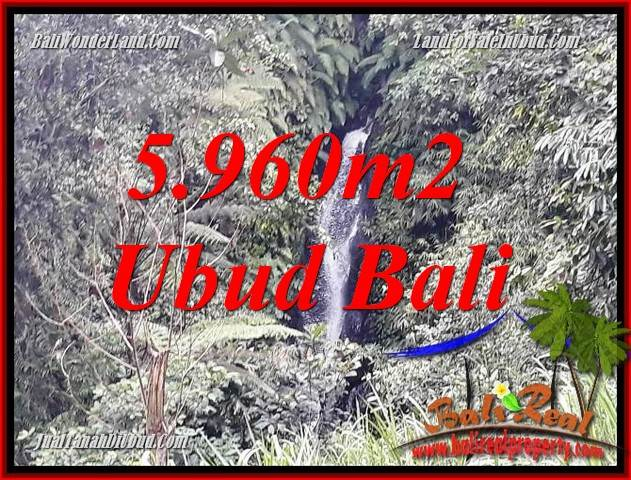 Affordable 5,960 m2 Land for sale in Ubud Payangan TJUB696