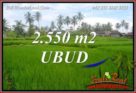 Exotic Property Ubud Land for sale TJUB700