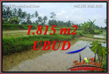 Magnificent Land for sale in Ubud TJUB703
