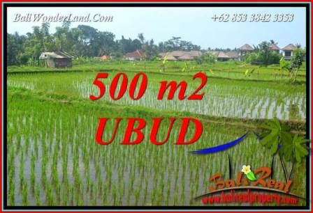 Beautiful Property Land for sale in Ubud Bali TJUB708