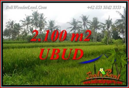 FOR sale Beautiful Property 2,100 m2 Land in Ubud Pejeng TJUB710