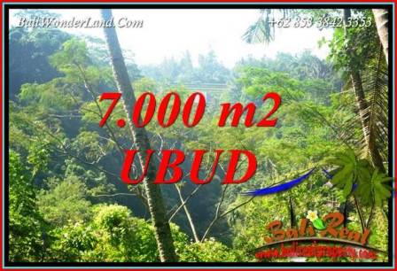 FOR sale Exotic Property Land in Ubud TJUB714