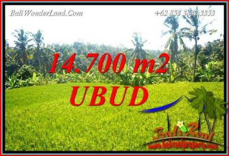 Beautiful 14,700 m2 Land in Ubud Tegalalang for sale TJUB717
