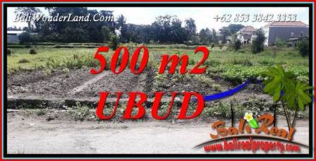 Affordable Property Land for sale in Ubud Bali TJUB720
