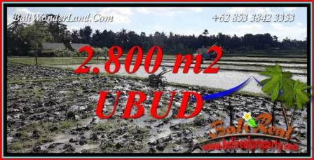 FOR sale Beautiful 2,800 m2 Land in Ubud Bali TJUB722