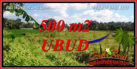 Magnificent 500 m2 Land in Sentral Ubud for sale TJUB724