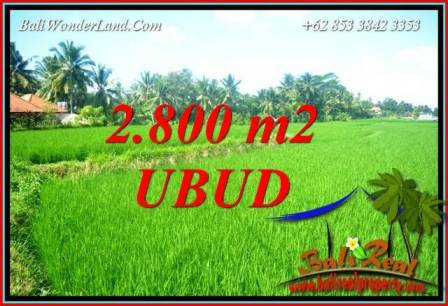 Beautiful Property Sentral Ubud Bali 2,800 m2 Land for sale TJUB726