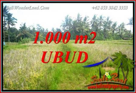 Exotic Property 1,000 m2 Land for sale in Ubud Pejeng Bali TJUB727