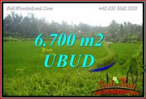 Beautiful 6,700 m2 Land for sale in Ubud Tegalalang TJUB731