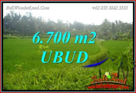 FOR sale Magnificent Property 6,700 m2 Land in Ubud Tegalalang TJUB731