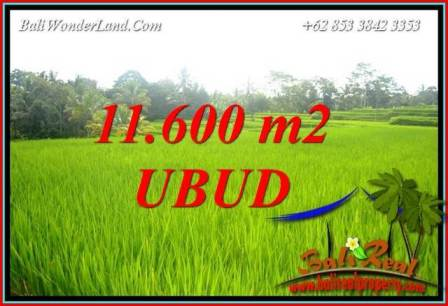 Exotic Land for sale in Ubud TJUB732