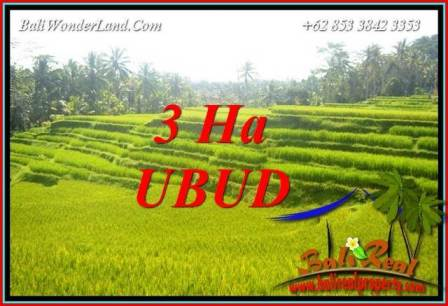 Exotic Ubud Bali 30,000 m2 Land for sale TJUB733