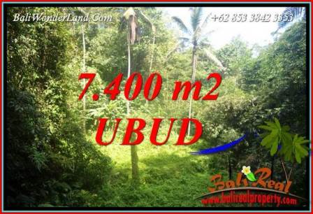 Exotic 7,700 m2 Land sale in Ubud Bali TJUB734