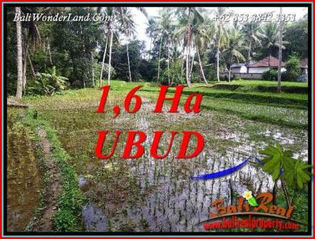Affordable Ubud Bali 16,000 m2 Land for sale TJUB735