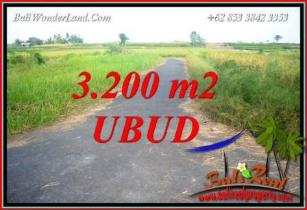 Affordable Property 3,200 m2 Land in Ubud Singapadu Bali for sale TJUB736