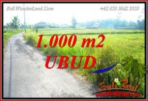 Exotic Property Ubud Pejeng 1,000 m2 Land for sale TJUB739
