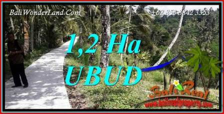 Beautiful Property Ubud Bali Land for sale TJUB740