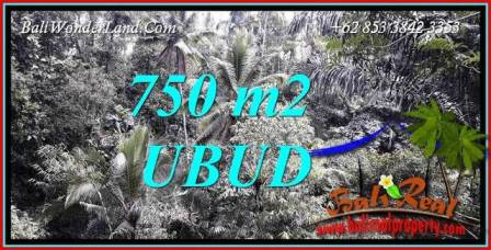 Beautiful Ubud Tampak Siring Bali 750 m2 Land for sale TJUB742