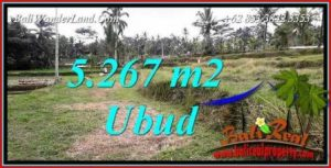 Magnificent Property Land for sale in Ubud Bali TJUB743