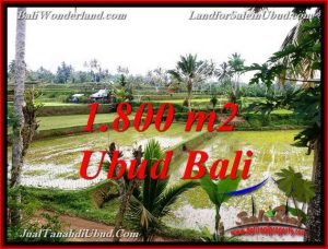 FOR SALE Exotic LAND IN TEGALALANG UBUD BALI TJUB769