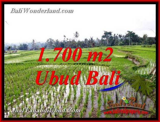 Beautiful LAND IN UBUD FOR SALE TJUB770