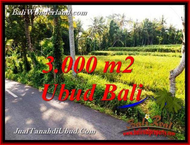 Affordable PROPERTY 3,000 m2 LAND IN PEJENG UBUD FOR SALE TJUB771