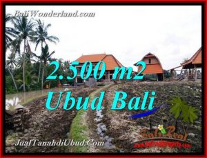 Affordable LAND FOR SALE IN UBUD TJUB772