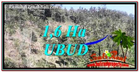 Exotic PROPERTY Ubud Tegalalang 16,000 m2 LAND FOR SALE TJUB748