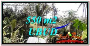 Exotic PROPERTY 550 m2 LAND FOR SALE IN Ubud Pejeng BALI TJUB751