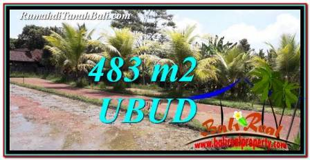 Exotic PROPERTY UBUD LAND FOR SALE TJUB752