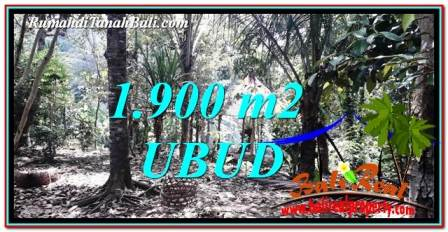Affordable UBUD BALI 1,900 m2 LAND FOR SALE TJUB755