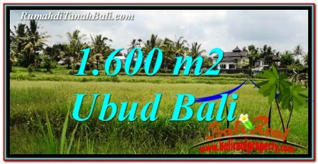 FOR SALE Exotic 1,600 m2 LAND IN UBUD BALI TJUB756