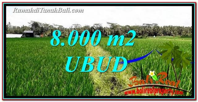 Beautiful PROPERTY LAND FOR SALE IN UBUD BALI TJUB763