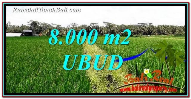 8,000 m2 LAND IN UBUD BALI FOR SALE TJUB763