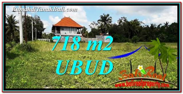 Magnificent PROPERTY UBUD BALI LAND FOR SALE TJUB767