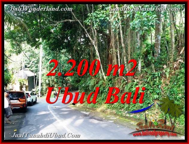 Exotic PROPERTY 2,200 m2 LAND FOR SALE IN SENTRAL UBUD BALI TJUB768
