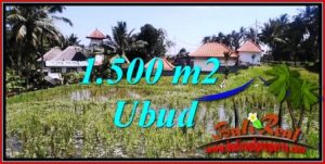 Magnificent LAND SALE IN UBUD TJUB744