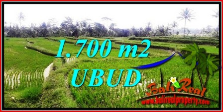 Magnificent Ubud Tegalalang 1,700 m2 LAND FOR SALE TJUB745