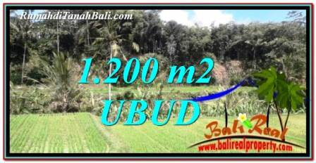 Ubud Tegalalang BALI LAND FOR SALE TJUB746