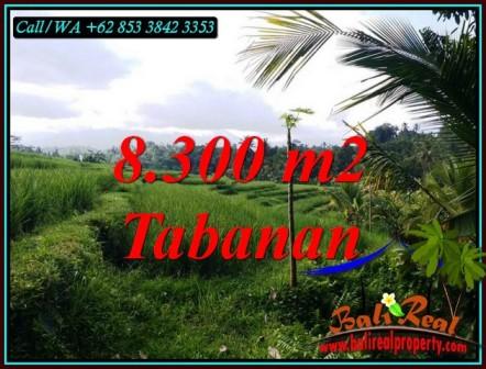 FOR SALE Affordable PROPERTY LAND IN TABANAN BALI TJTB501