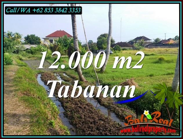 Exotic LAND IN TABANAN BALI FOR SALE TJTB502