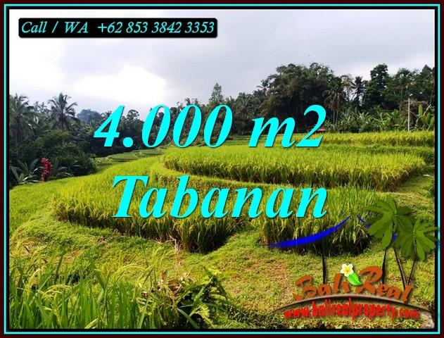Affordable 4,000 m2 LAND FOR SALE IN PENEBEL TABANAN BALI TJTB499A