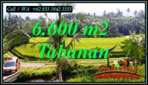 Affordable PROPERTY PENEBEL TABANAN LAND FOR SALE TJTB499C