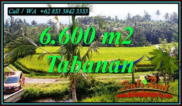 Beautiful LAND IN PENEBEL TABANAN FOR SALE TJTB499C
